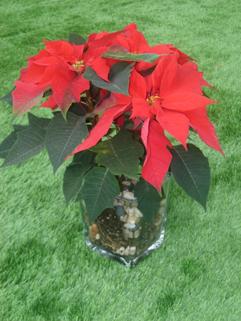 La mesa para Nochebuena | El Blog de Leonor